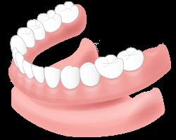 総義歯(総入れ歯)